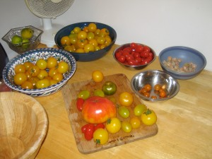tomatoes on table